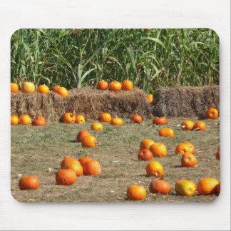 Kürbis-, Mais-und Heu-Herbst-Ernte-Fotografie Mousepad