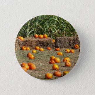 Kürbis-, Mais-und Heu-Herbst-Ernte-Fotografie Runder Button 5,7 Cm