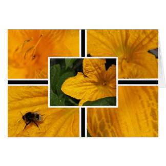 Kürbisblüte mit Hummel Karte