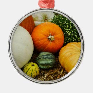 Kürbise und Kürbisse Rundes Silberfarbenes Ornament