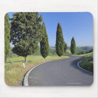 Kurvenreiche Straße gezeichnet mit Zypresse-Bäumen Mousepads