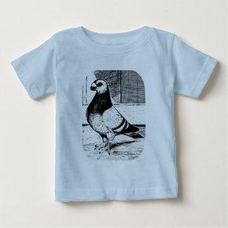 Kurze gegenübergestellte Taube Antwerpens Baby T-shirt