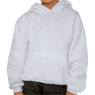 Küssen Sie mich den ich ein Segelflugzeug-Pilot Kapuzensweater