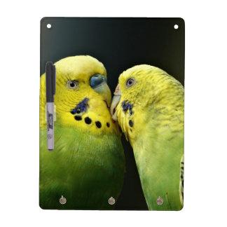 Küssen von Budgie Papageien Trockenlöschtafel