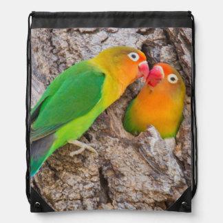Küssende Fischers Lovebirds, Afrika Sportbeutel