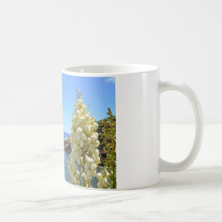 Küste-und Yucca-Blumen in der Blüte Kaffeetasse