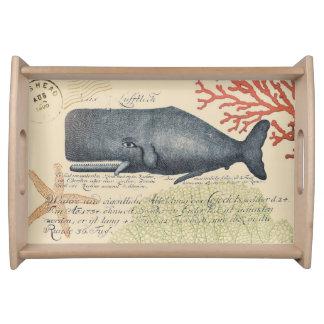 Küsten-Blauwal-Collage Tabletts