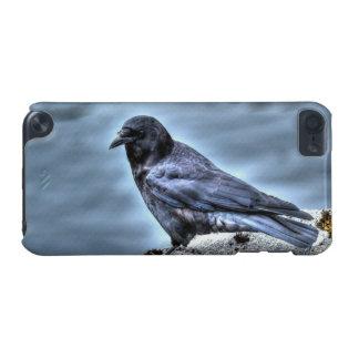 Küstenrabe Corvid-Liebhaber Kunst-Entwurf iPod Touch 5G Hülle