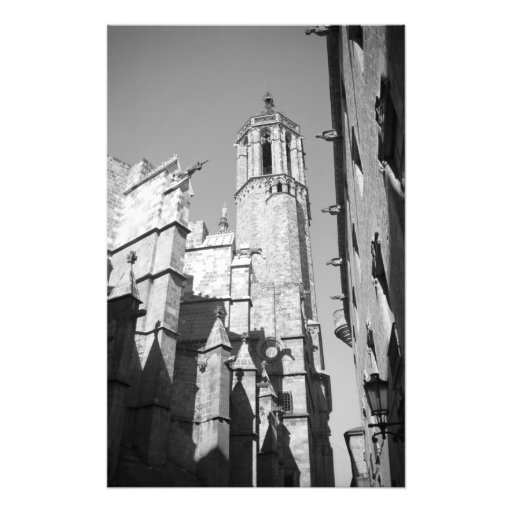 La Catedral Wasserspeier-Foto (Barcelona, Spanien)