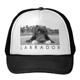 Labrador B&W Netzkappe