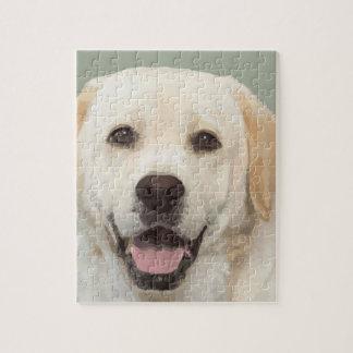Labrador retriever 1 puzzle