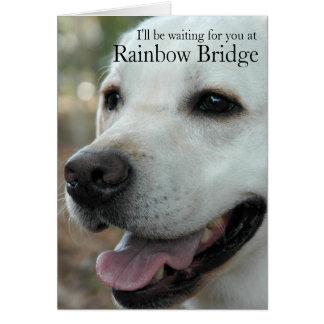 Labrador-Retriever-Beileid card2 Karte
