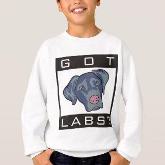 Labrador-Retriever erhielt Labradore? Sweatshirt