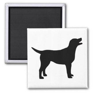 Labrador retriever (im Schwarzen) Kühlschrankmagnet