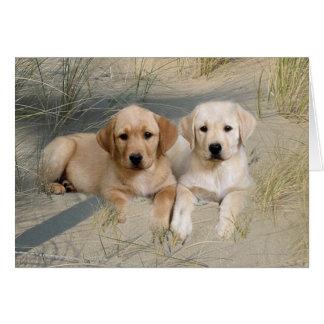 Labrador retriever-Karten-Welpen auf Strand Karte