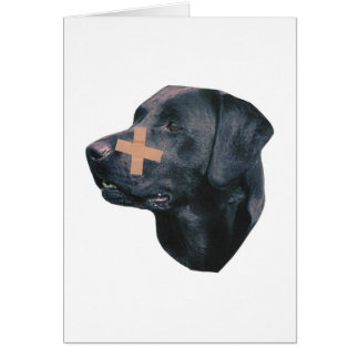 Labrador retriever mit Band-Hilfe Karte