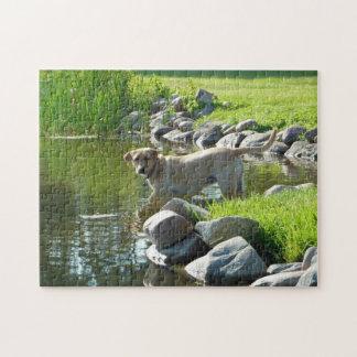 Labrador Retriever See-Felsen Puzzle