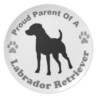 Labrador retriever teller