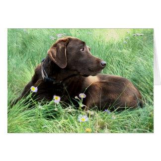 Labrador-Retriever und lila Blumen Karte
