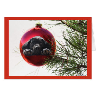 Labrador retriever-Weihnachtskarten-Ball Hanging9 Karte