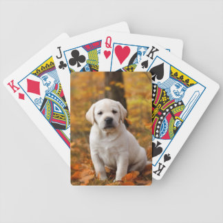 Labrador retriever-Welpe Bicycle Spielkarten