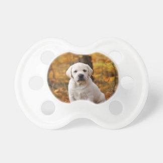 Labrador retriever-Welpe Schnuller