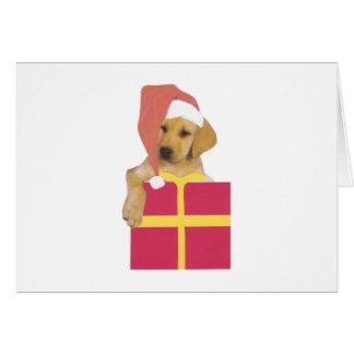 Labrador-Retriever-Welpen-Weihnachtsmannmütze Karte