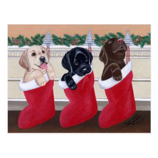 Labrador retriever-Welpen-Weihnachtspostkarten Postkarte