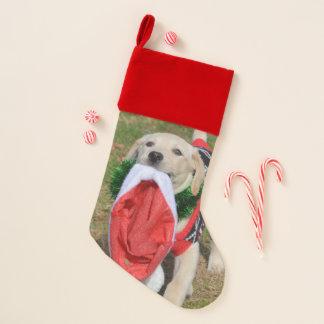 Labrador-Welpe mit Weihnachtsmannmütze Weihnachtsstrumpf