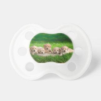 Labrador-Welpen-Power Schnuller
