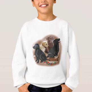 Labradorwelpen mit Spielwaren Sweatshirt