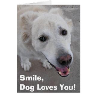Lächeln, HundeLieben Sie! Karte