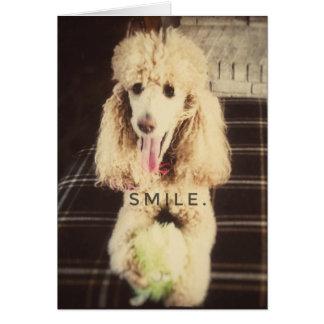 Lächeln-Pudel-Raum-Gruß-Karte Karte