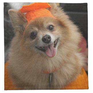 Lächelnder Foxy Spitz-Welpe im Kürbis Halloween Serviette