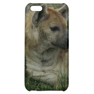 Lachende Hyäne iPhone 5C Schale