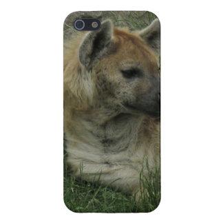 Lachende Hyäne Etui Fürs iPhone 5