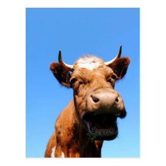 Lachende Kuh Postkarte