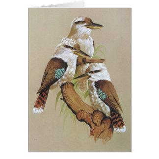 Lachendes Kookaburra - Dacelo gigas Karte