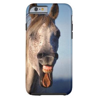 lachendes Pferd Tough iPhone 6 Hülle
