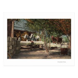 Laden-Frucht an Longview Ranch Postkarte