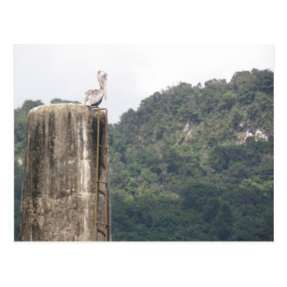 Lago DOS Bocas Utuado Puerto Rico Postkarte