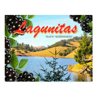 """Lagunitas, """"solche Weichheit"""" (Hass, nehmen 2) Postkarte"""
