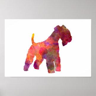 Lakeland Terrier im Watercolor Poster