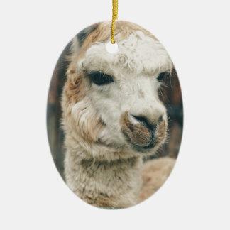 Lama-nahes hohes keramik ornament