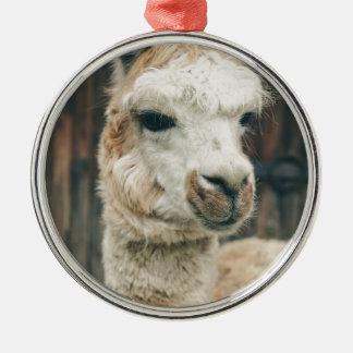Lama-nahes hohes rundes silberfarbenes ornament
