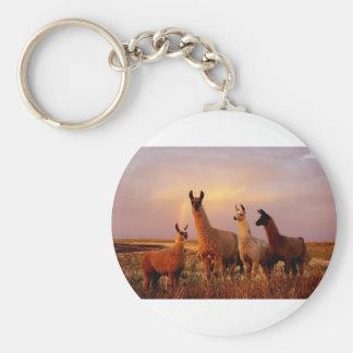 Lamas mit einem Regenbogenhimmel Schlüsselanhänger