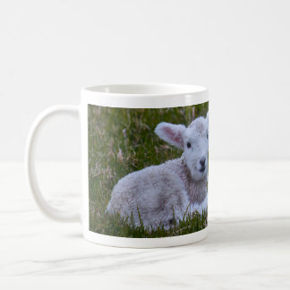 Lamm Kaffeetasse