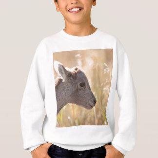 Lamm Sweatshirt