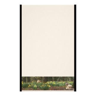 Lämmer u. Blumen-Briefpapier Briefpapier
