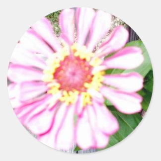 """""""Land-Blumen-Andenken-Sammlung """" Runder Aufkleber"""